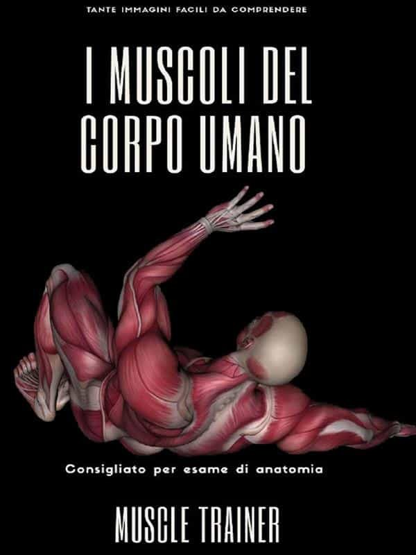 Descargar PDF I Muscoli Del Corpo Umano