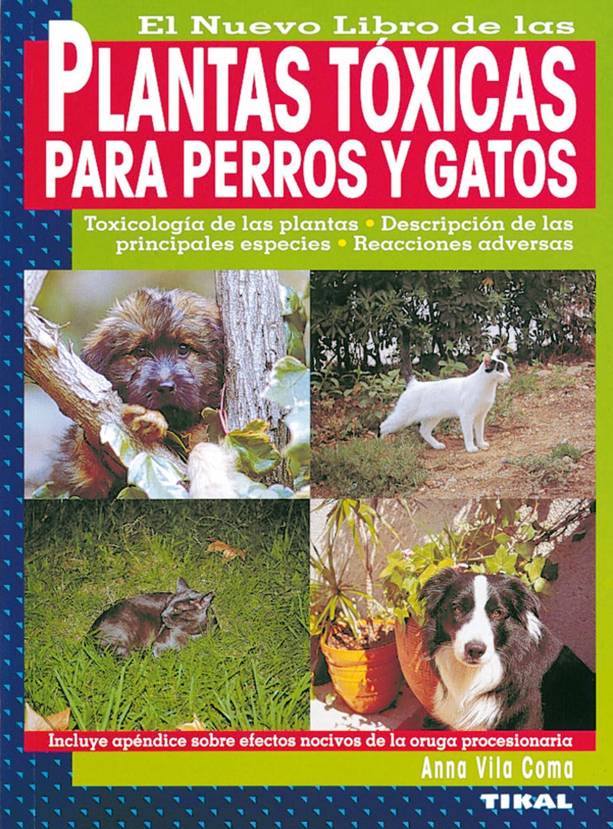 EL NUEVO LIBRO DE LAS PLANTAS TOXICAS PARA PERROS Y GATOS | ANNA ...