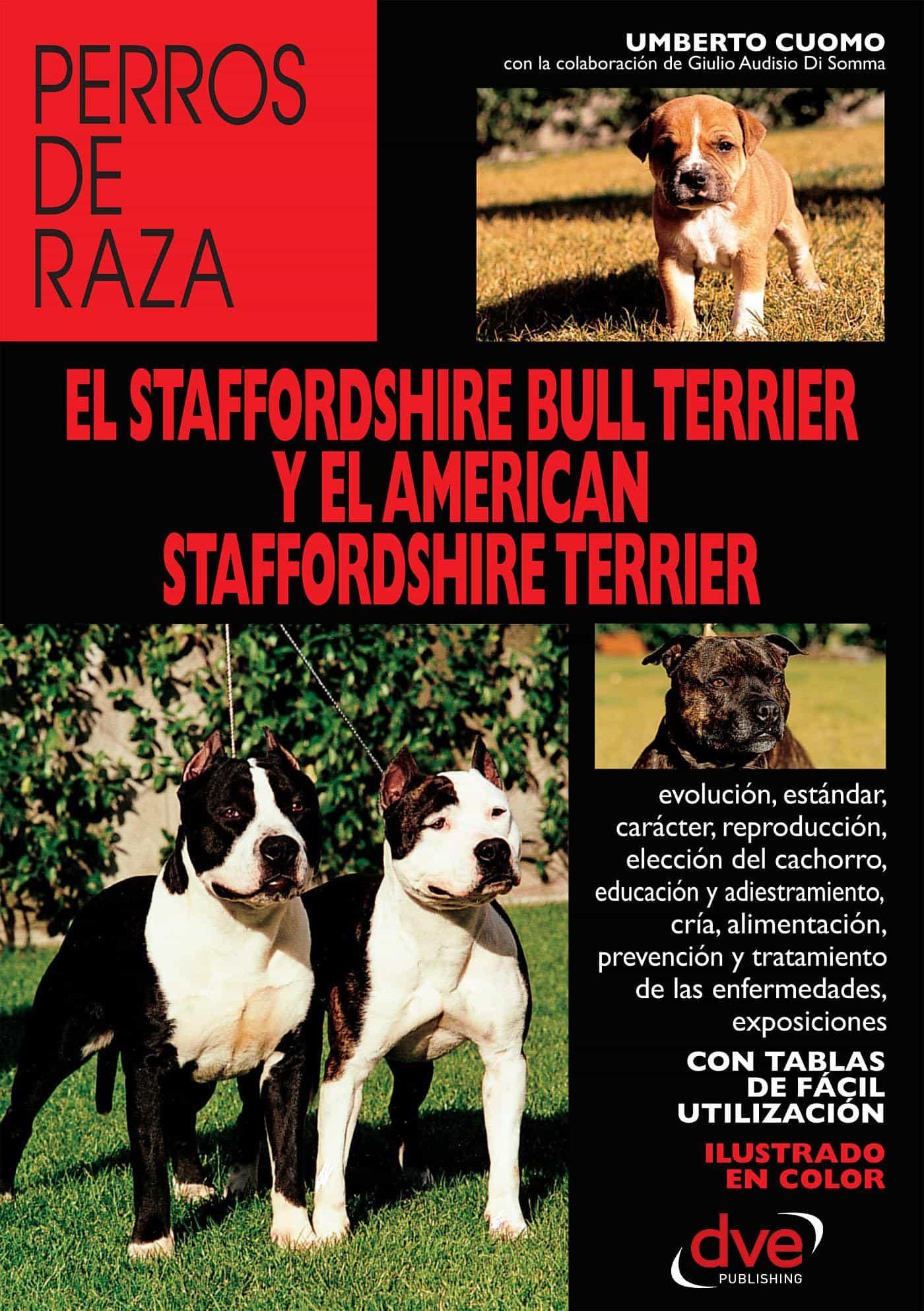 EL STAFFORDSHIRE BULL TERRIER Y EL AMERICAN STAFFORDSHIRE TERRIER ...