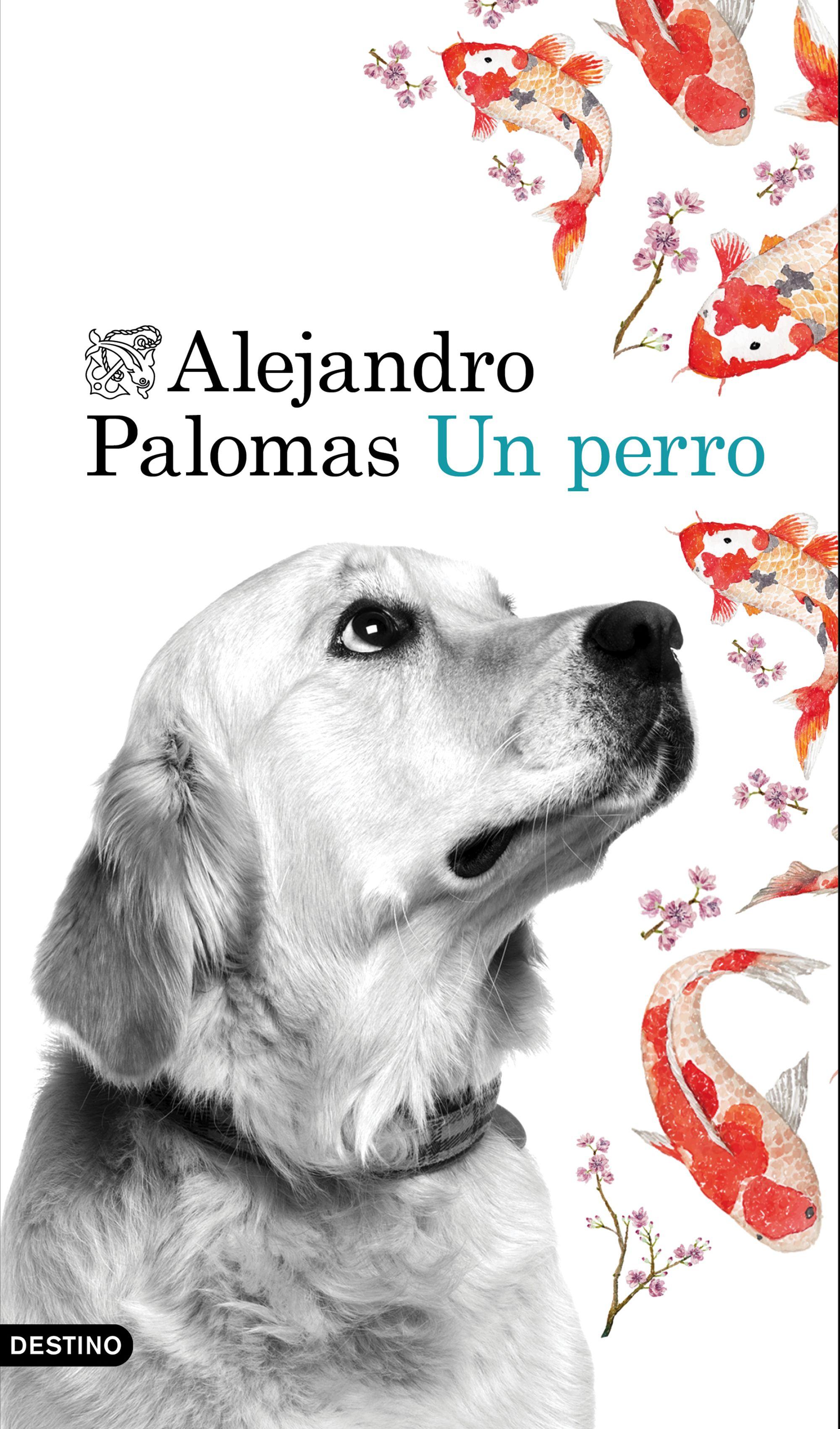 Resultado de imagen de un perro alejandro palomas