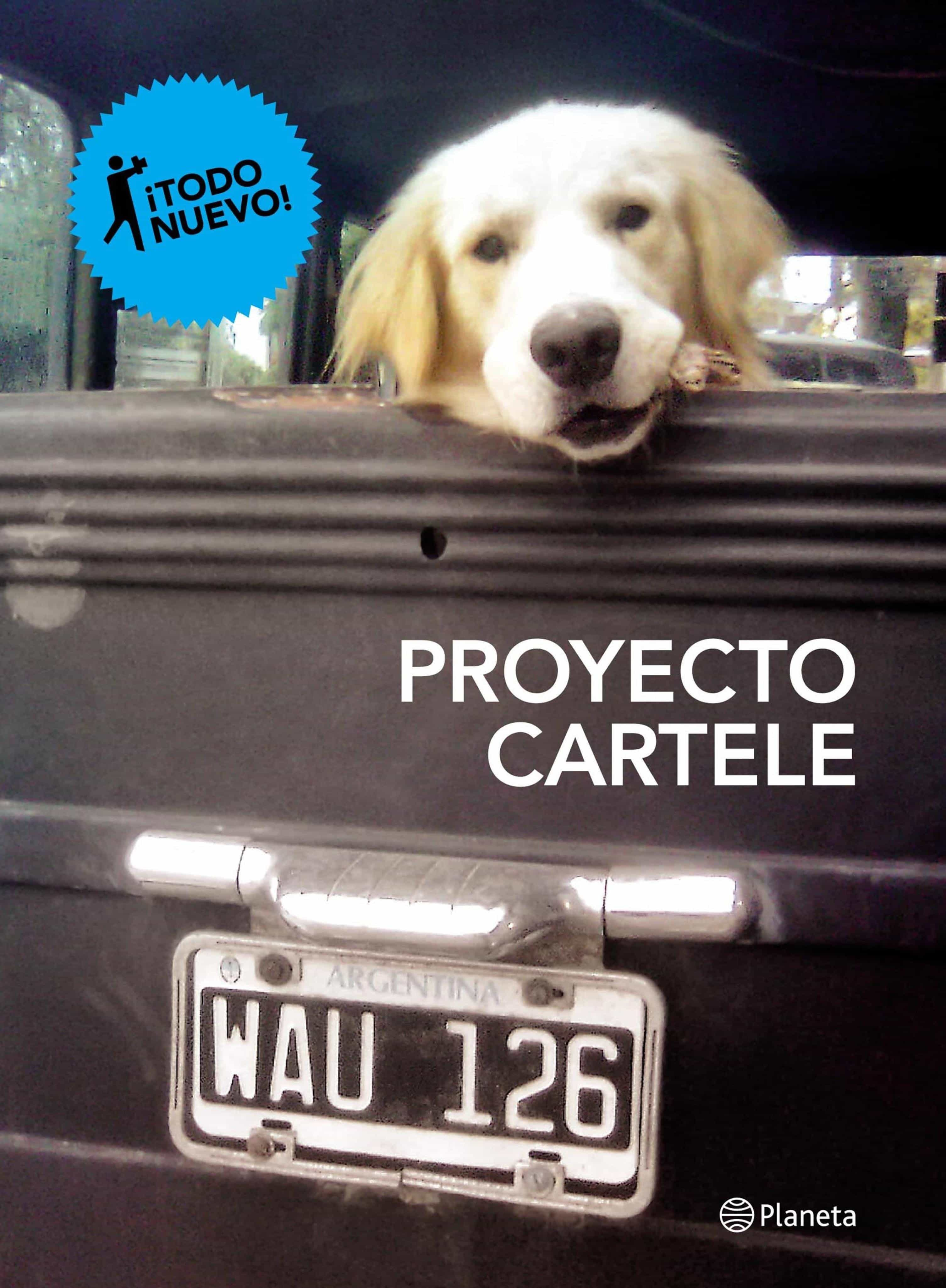 Proyecto Cartele