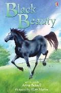 Black Beauty por Vv.aa. epub