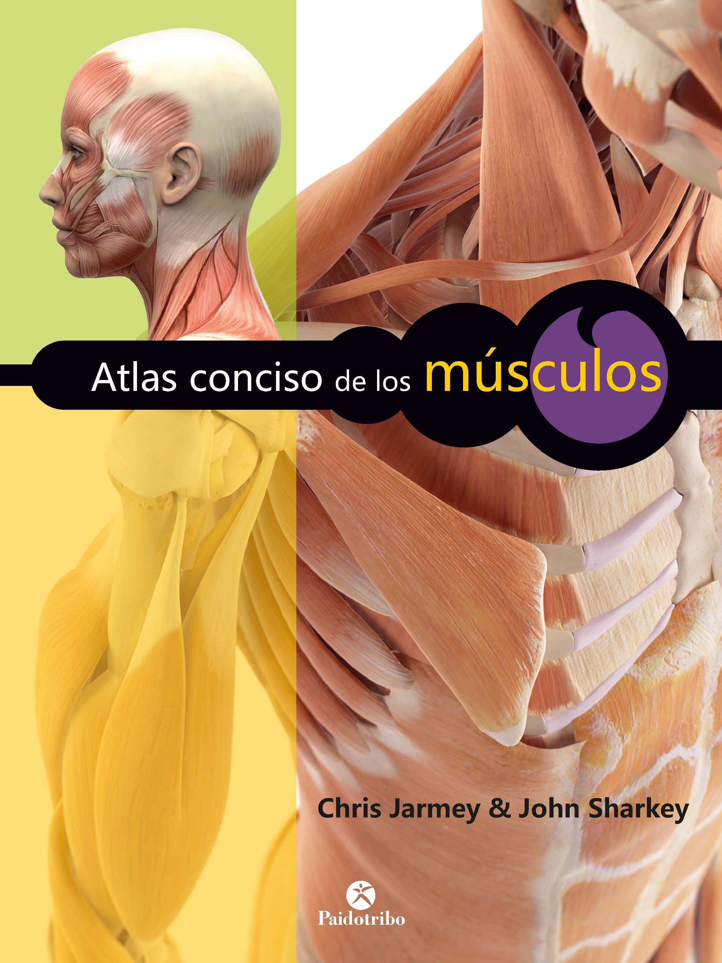 ATLAS CONCISO DE LOS MÚSCULOS - NUEVA EDICIÓN (COLOR) EBOOK   CHRIS ...