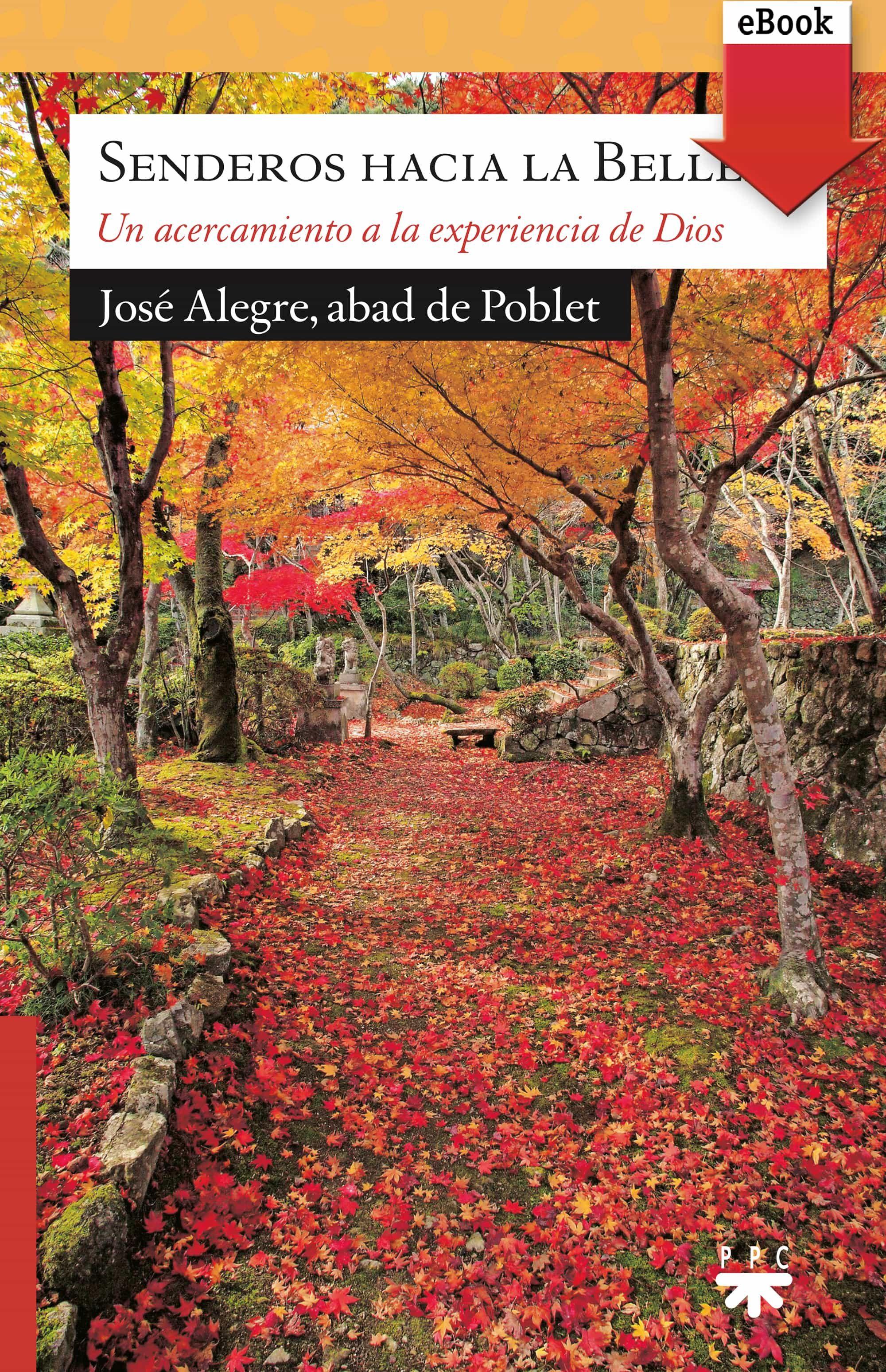 Senderos Hacia La Belleza (ebook-epub)   por Alegre Vilas José epub