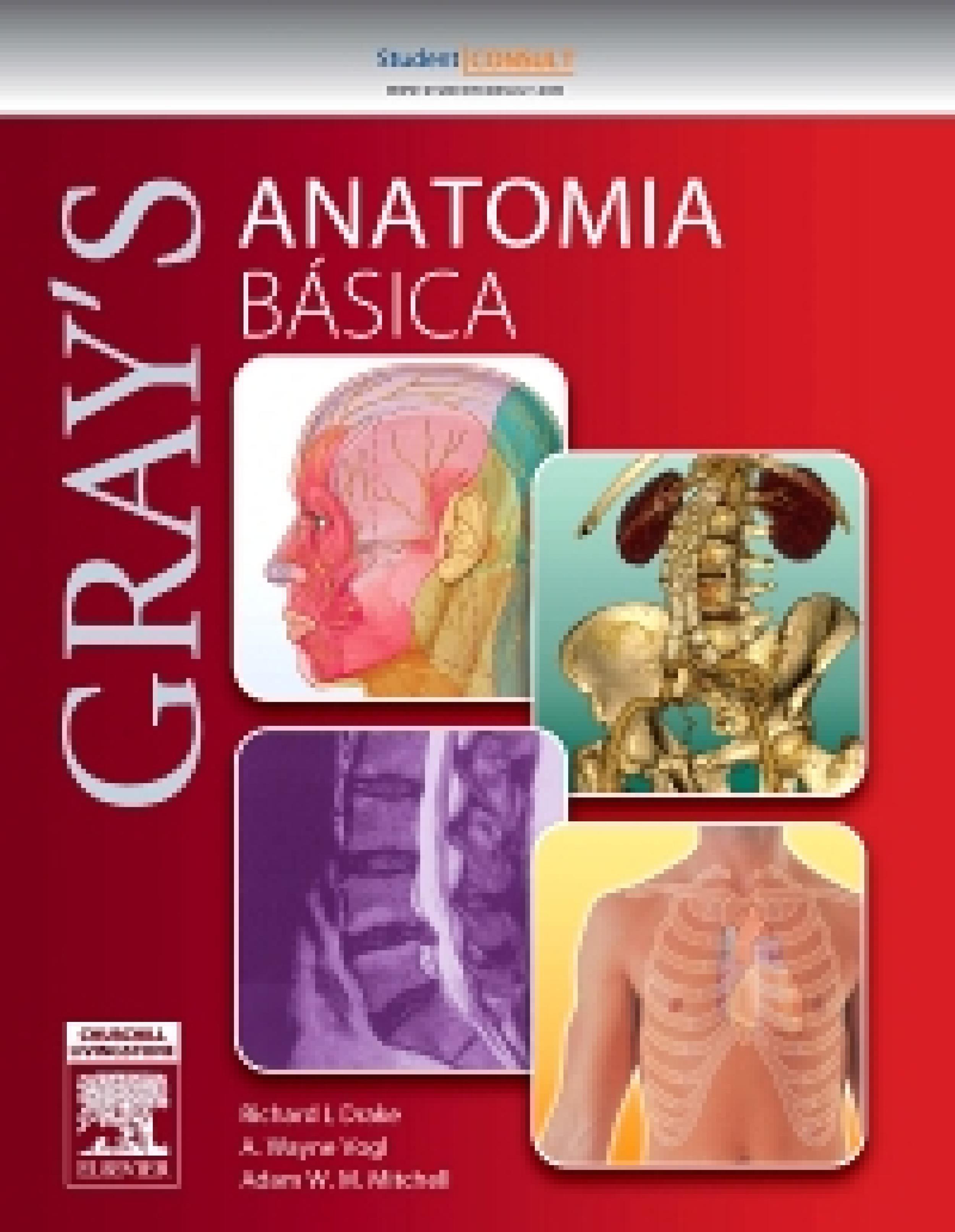 GRAY ANATOMIA BÁSICA EBOOK | RICHARD DRAKE | Descargar libro PDF o ...