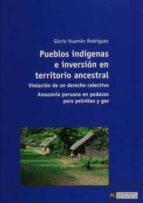 Pueblos indígenas e inversión en territorio ancestral