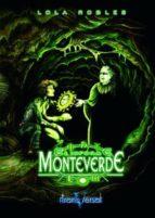 EL INFORME MONTEVERDE (EBOOK)