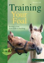 Training Your Foal: Raising A Foal From Birth To Backing (English Edition)
