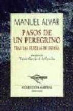 PASOS DE UN PEREGRINO: TRAS LAS HUELLAS DE ESPAÑA