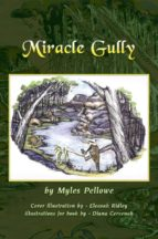 Miracle Gully (English Edition)