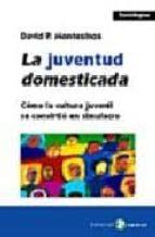 la juventud domesticada-david montesinos-9788478843503