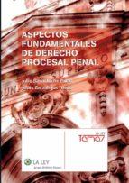 ASPECTOS FUNDAMENTALES DE DERECHO PROCESAL PENAL (EBOOK)