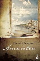 Amantea (Novela y Relatos)