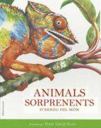 Animals sorprenents del món (CONOCER  Y COMPRENDER)