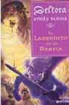 deltora: el laberinto de la bestia-emily rodda-9788484412113