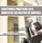 CUESTIONES PRÁCTICAS EN EL ÁMBITO DE LOS DELITOS DE EMPRESA (EBOOK)