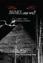 Awake (Are We)? Part 2 the Rebirth of Sublin (Aware (Are We)?) (English Edition)