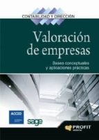 VALORACIÓN DE EMPRESAS (EBOOK)