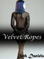 Velvet Ropes: An Erotic BDSM Fantasy (English Edition)