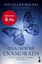 Una Noche. Enamorada (Bestseller Internacional)