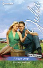 Un amor perfecto (Miniserie Julia)