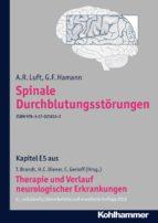 spinale durchblutungsstörungen (ebook) a. r. luft g. f. hamann 9783170246133