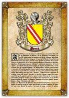 apellido panea / origen, historia y heráldica de los linajes y apellidos españoles e hispanoamericanos (ebook) antonio tapia cdlhf00018233