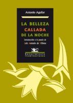 LA BELLEZA CALLADA DE LA NOCHE (EBOOK)