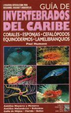 GUIA DE INVERTEBRADOS DEL CARIBE