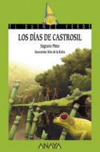 Los días de Castrosil (Literatura Infantil (6-11 Años) - El Duende Verde)
