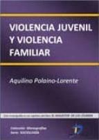 VIOLENCIA JUVENIL Y VIOLENCIA FAMILIAR (EBOOK)