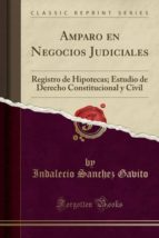 Amparo en Negocios Judiciales: Registro de Hipotecas; Estudio de Derecho Constitucional y Civil (Classic Reprint)