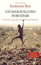 UN MARAVILLOSO PORVENIR (EBOOK)