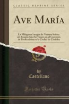 Ave María: La Milagrosa Imagen de Nuestra Señora del Rosario Que Se Venera en el Convento de Predicadores en la Ciudad de Córdoba (Classic Reprint)