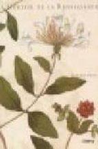 Libros de descarga en línea gratis Herbier de la renaissance
