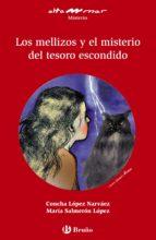 Los Mellizos Y El Misterio Del Tesoro Escondido (Castellano - A Partir De 12 Años - Altamar)