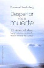 Despertar tras la Muerte: el viaje del alma hacia los Reinos Espirituales tras la muerte del cuepo (NUEVA CONSCIENCIA)