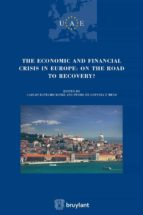 The Economic and Financial crisis in Europe : on the road to recovery (Union des avocats européens (UAE) Book 12) (English Edition)