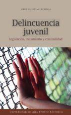 delincuencia juvenil (ebook)-jorge valencia corominas-9789972453663