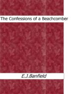 The Confessions of a Beachcomber