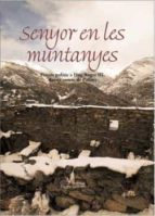 Senyor en les muntanyes (Visió)