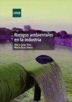 RIESGOS AMBIENTALES EN LA INDUSTRIA (EBOOK)