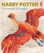 harry potter: un monde de magie j.k. rowling 9782075105873