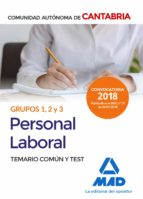 personal laboral de la comunidad autonoma de cantabria grupos 1, 2 y 3. temario comun y test 9788414215173