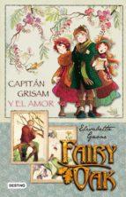 Fairy Oak Capitan Grisam y el amor