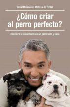 ¿Cómo Criar Al Perro Perfecto? (CLAVE)