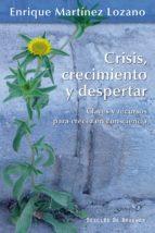 Crisis, crecimiento y despertar: 174 (Serendipity)