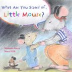 What Are You Scared of Little Mouse?