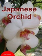 Japanese Orchid (English Edition)