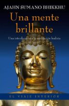 UNA MENTE BRILLANTE (EBOOK)